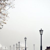 Туман :: Ольга Могдалёва