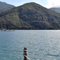 Озеро Ледро, Италия, 2013 :: Alena Osina