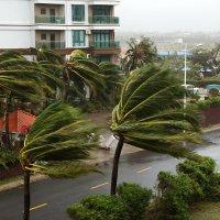 Тайфун Haiyan :: Сергей Ко