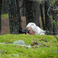 Фото-охота :: Lina Liber