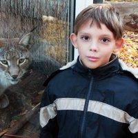 Друг (Зоопарк г. Черкассы) :: ViP_ Photographer