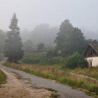 Утро туманное :: Диана Задворкина