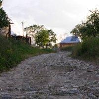 Кидекша. Самая старая дорога к переправе через р.Нерль :: Николай ntv