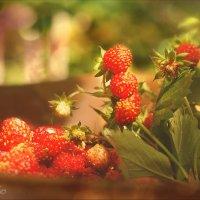 Про ароматное лето... :: Елена Kазак