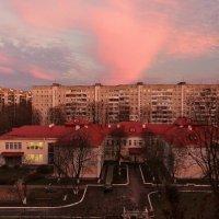 В лучах закатного солнца... :: Nonna