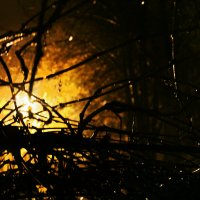 Ночь, дождь, улица, фонарь... :: Irina Gajdukova