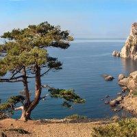 Новый Свет Крым :: Нилла Шарафан