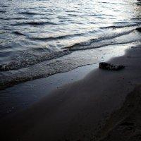 Речная волна :: Михаил Ситчихин