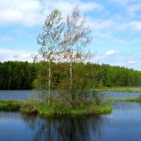 Островок для двоих :: Сергей В. Комаров