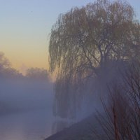 Туман :: G Nagaeva