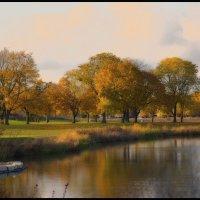 Golden Autumn. :: Gene Brumer