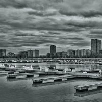 My Chicago :: Gene Brumer
