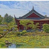 Montreal Botanic Garden. :: Gene Brumer