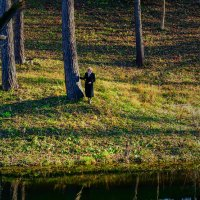 Прогулка в парке :: Владимир Хижко