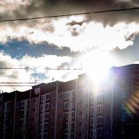 Утро :: Ольга Лабоцкая