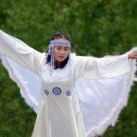белые крылья :: Юрий Приходько