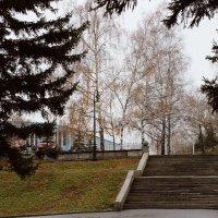 Осенний парк :: Натали Антонюк