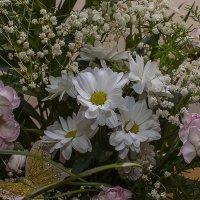 Праздник цветов :: photopixel photopixel