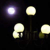 Замена лампочки :: Алена Афанасьева