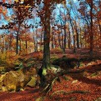 Что такое осень, - это камни... :: Владимир Глазунов