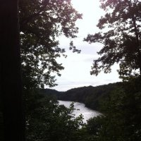 НазваниеОзеро в Версальском лесу :: Tatiana Voitchak