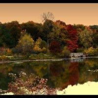 Little lake in Northbrook. :: Gene Brumer