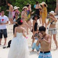 невеста из пены морской :: сергей плужник
