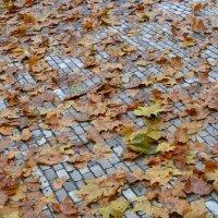 Осень в Дрездене :: Юлия Леденева