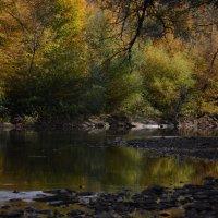 горная река осенью :: Надежда Лопатина
