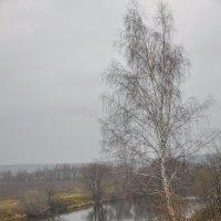 Хмурое утро :: Ирина Пирогова