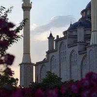 Сердце Чечни :: Зубаир Байраков