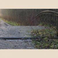 Старый мост :: sv.kaschuk