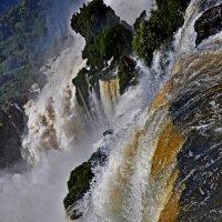 Iguazu :: Алексей