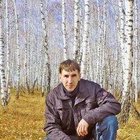 Я в весеннем лесу .... :: юрий Амосов