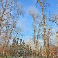 Осенняя алея :: юрий Амосов