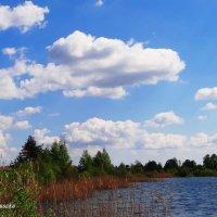 Весна, озеро. :: Антонина Гугаева