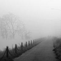 Слиянье октября и тишины... :: Александр | Матвей БЕЛЫЙ