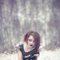 Зимняя нега :: Татьяна Ширякова