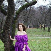 fairy tale :: Galina Shatokhina