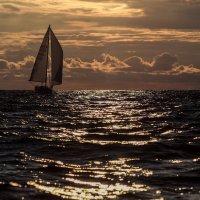 Парусник и море. :: Юрий