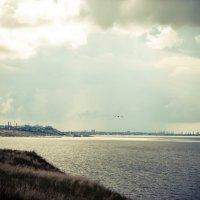 Азовское море :: Ольга Ципко