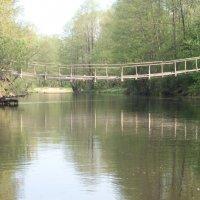 Река Нарочанка, Беларусь :: Павел Смоленков