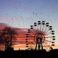 Вороний променад на закате :: Алена Афанасьева