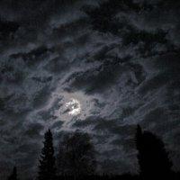 Плыла луна,ныряя в тучи :: Нина северянка