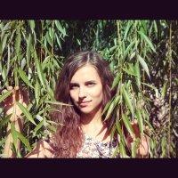 branches :: Анастасия Тюрина