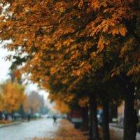 осень в моем городе :: Саша Ливень