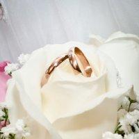 до того как они были одеты на пальца любящих сердец)))) :: Seda Yegiazaryan