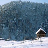 январь.. :: зоя полянская