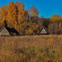 осень золотая :: Анатолий Портнов