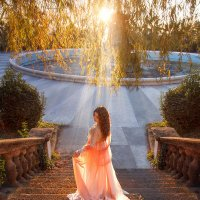 Sunlight :: Алина Филимонова